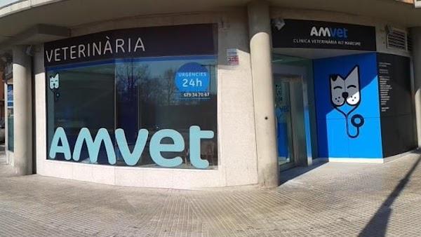 Amvet Clínica Veterinria Alt Maresme