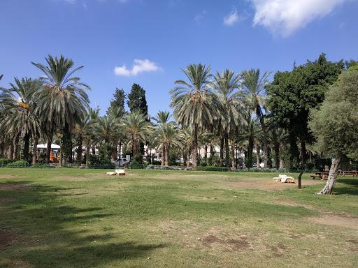 גן העיר