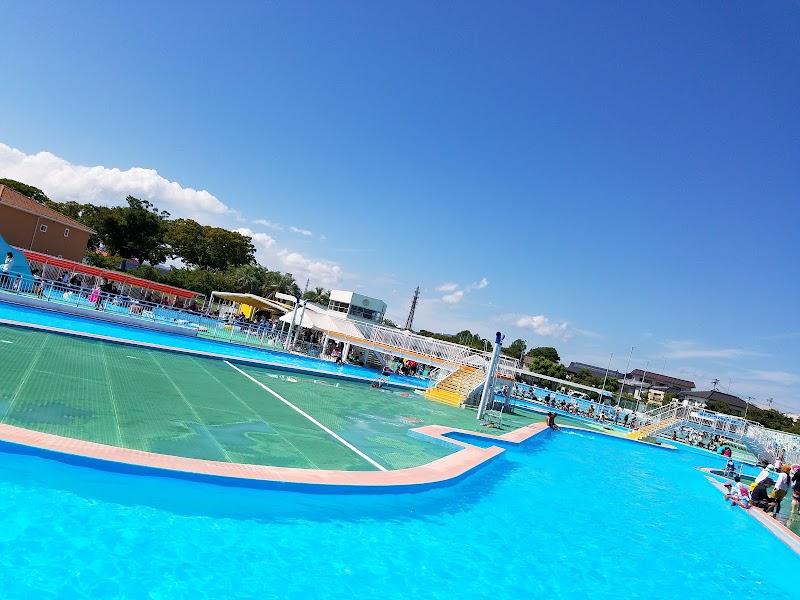 連盟 水泳 徳島 県