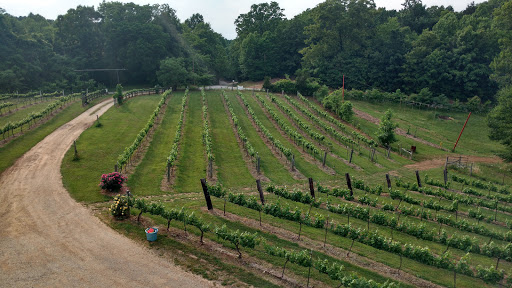 Vineyard «Lexington Vineyard», reviews and photos, 2000 Dog Hollow Rd, Lynnville, TN 38472, USA