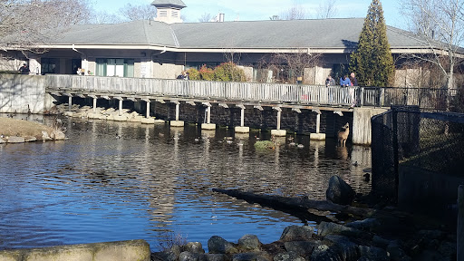 Zoo «Buttonwood Park Zoo», reviews and photos, 425 Hawthorn St, New Bedford, MA 02740, USA