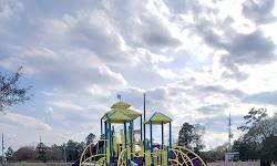 Champion Forest Park