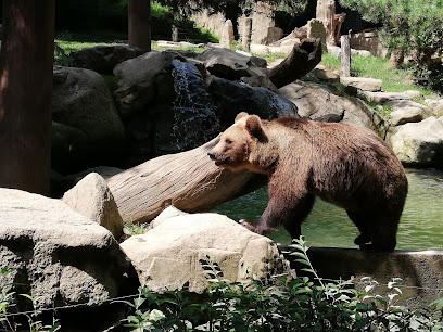 Animal Park of the Pyrenees