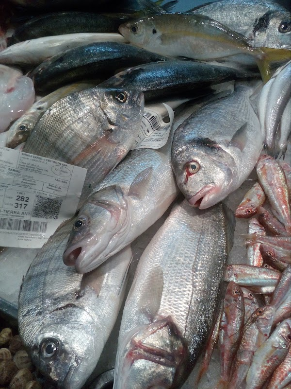 pescaderia SORIA