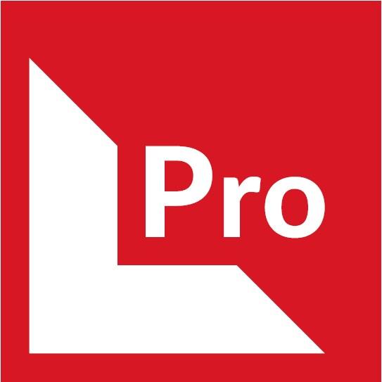 LPRO юридическая компания