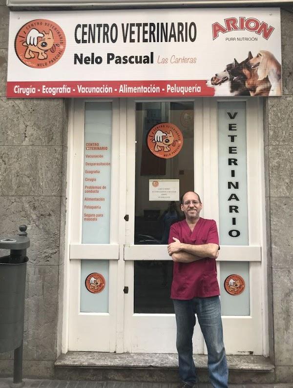 Centro Veterinario Nelo Pascual Las Canteras