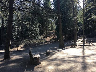 Lower Woodland Off-Leash Area