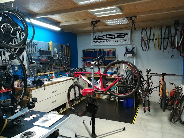 Bicicletas Afondo Bikes