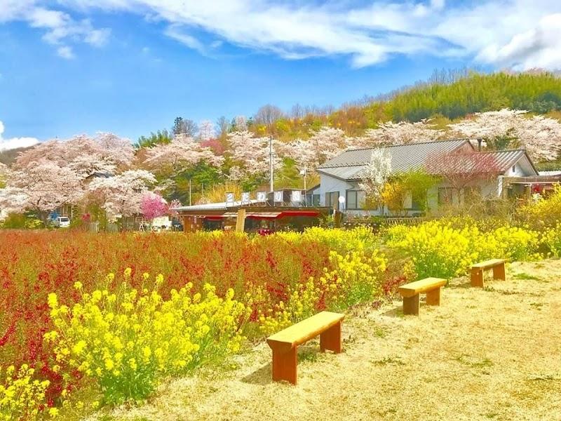 NPO花見山を守る会