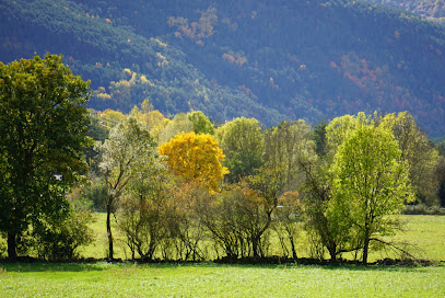 Llanos de Planduviar Park