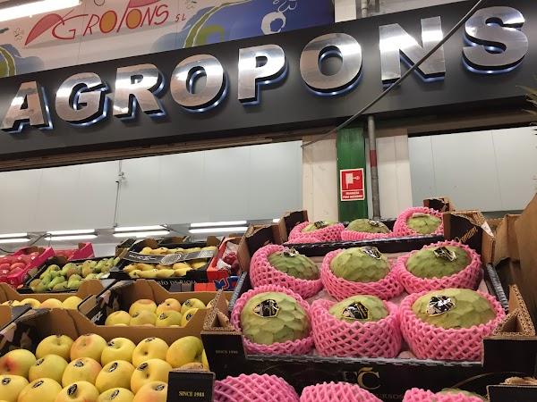Agropons S.L.