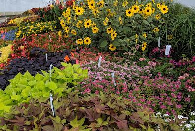 Fredericks Landscaping, Inc