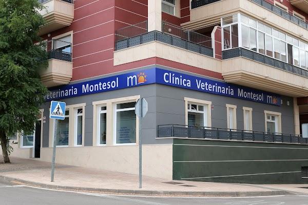 Clínica Veterinaria Montesol Cáceres  Urgencias veterinarias 24 horas
