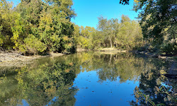 Willis Creek Park