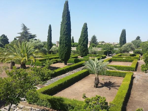 Floristería Jardín