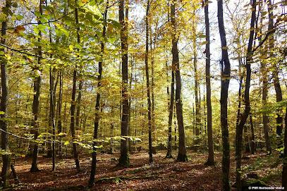 Parc Naturel Régional et Géoparc Normandie-Maine