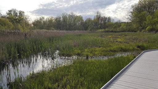 Nature Preserve «Jackson Bog State Nature Preserve», reviews and photos, 7984 Fulton Dr NW, Massillon, OH 44646, USA
