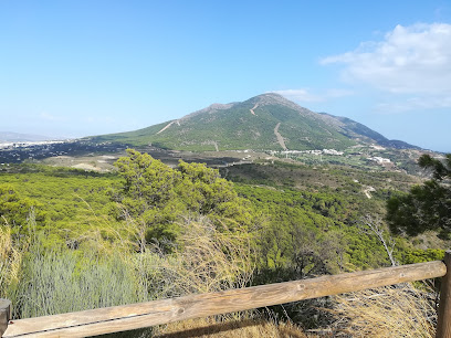 Mirador Cerro Alaminos