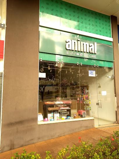 Animal Pet Care