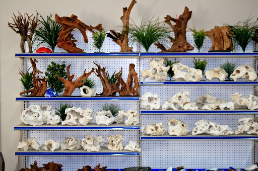 Tropical Fish Store «Aquatic Treasures/Bruces Pond Shop», reviews and photos, 20708 Gudith Rd, Brownstown Charter Twp, MI 48183, USA