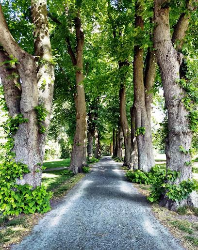 Coesfeld Park