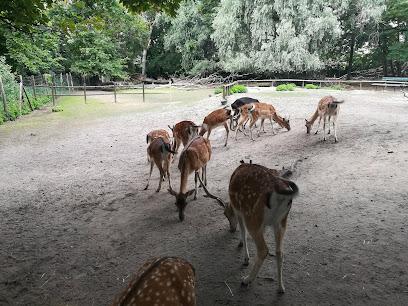 Tierpark Weißwasser