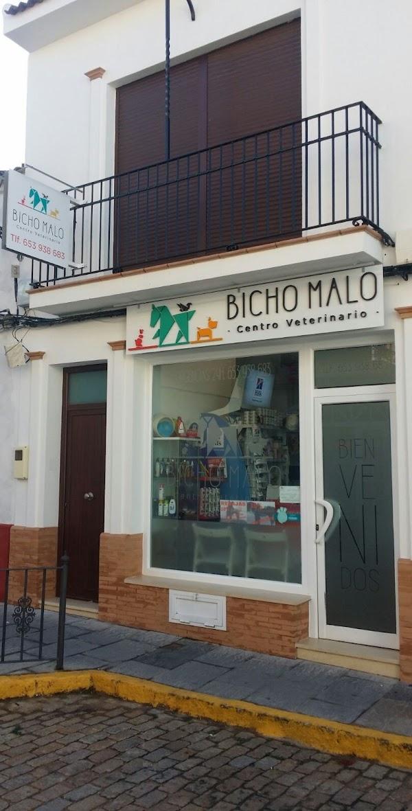 BICHO MALO - Centro Veterinario -