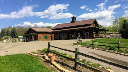 experience-wisdells-things-to-do-canyon-creek-riding-stables