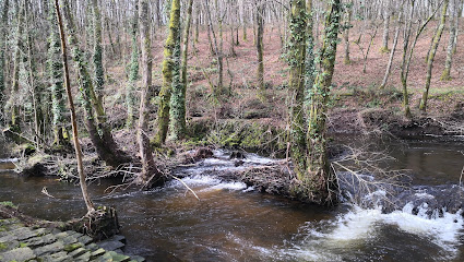 Paseo Fluvial de Vilalba