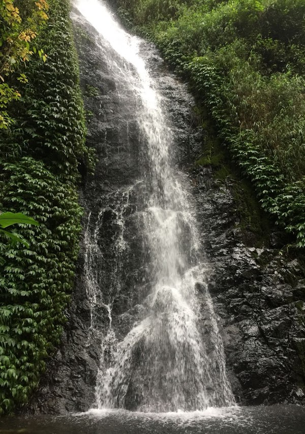 Air Terjun Selorejo