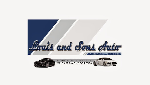 Car Dealer «Louis & Sons Auto», reviews and photos, 3319 NY-52, White Sulphur Springs, NY 12787, USA