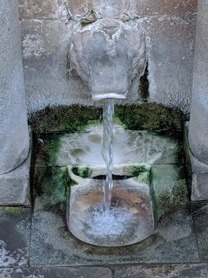 Lion's fountain