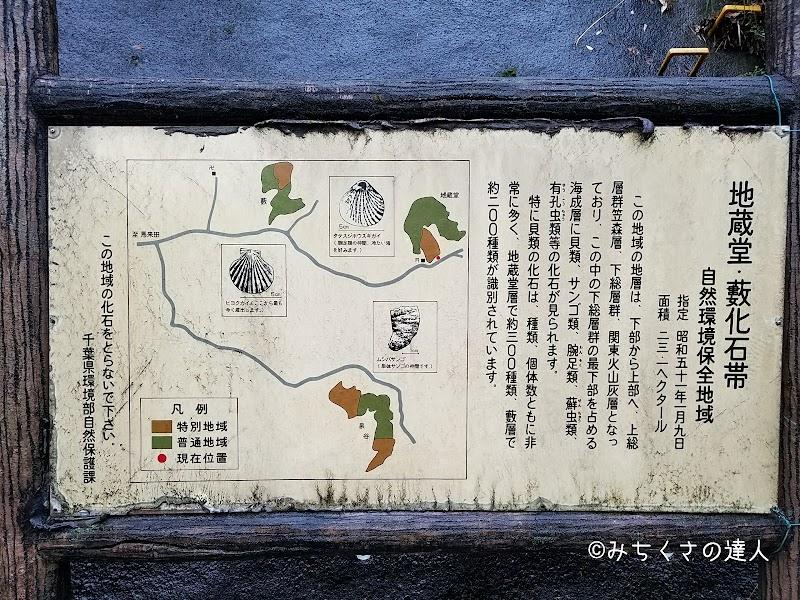 地蔵堂・藪化石帯自然環境保全地域