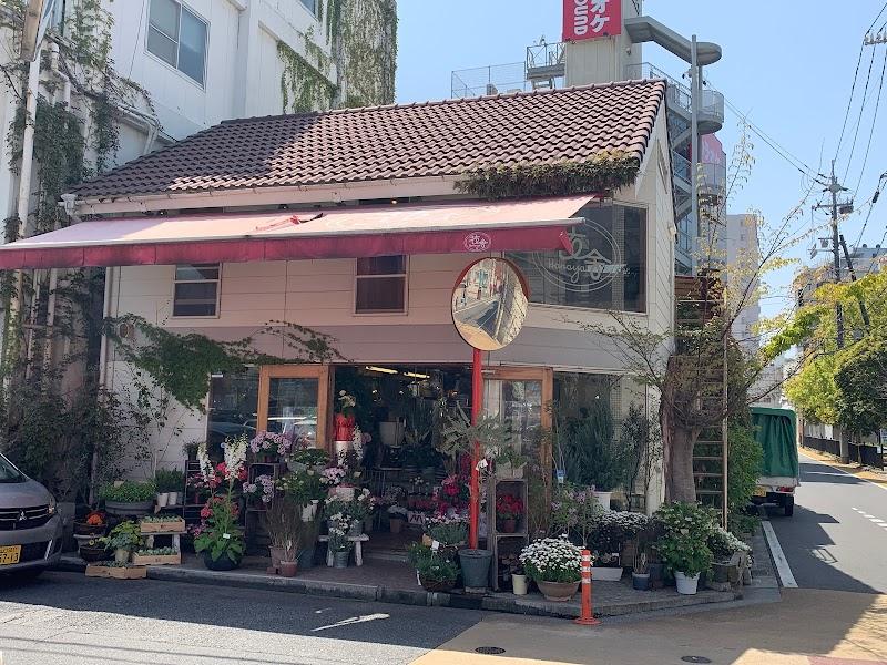 Hanayo Flower Shop