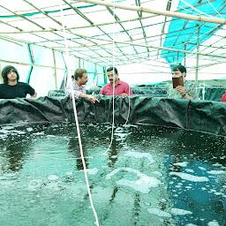 biofloc fish farming training center