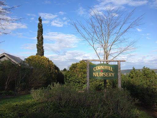 Jardinerie Corn Hill Nursery Ltd à Cornhill (NB) | LiveWay