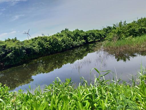 林邊光采濕地