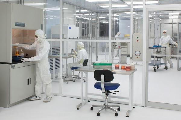 Alpesbiocontrol Control de plagas en Murcia