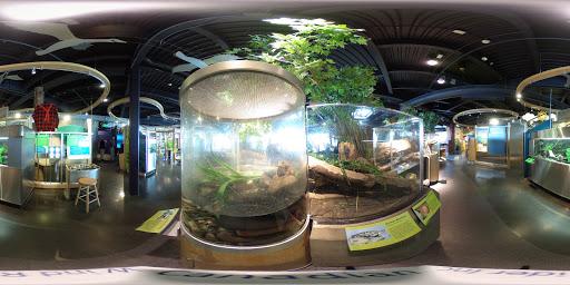Science Museum «ECHO, Leahy Center for Lake Champlain», reviews and photos, 1 College St, Burlington, VT 05401, USA