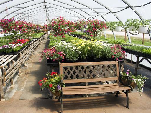 Jardinerie Serres Peradiennes à Sainte-Anne-de-la-Pérade (Quebec) | LiveWay