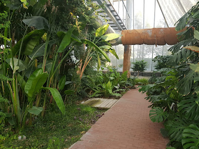 Arroyo de la Encomienda Botanical Garden