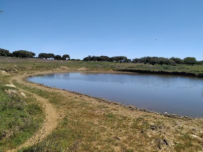 Periurbano de Conservación y Ocio Dehesa Boyal de Montehermoso Park