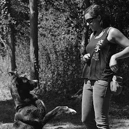 Instinct de Chien - Educateur canin à domicile en Drôme-Ardèche