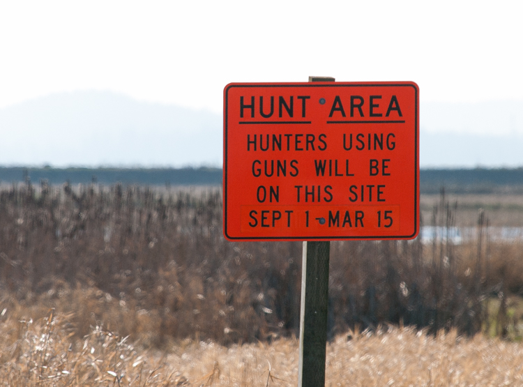 Image result for hunting season