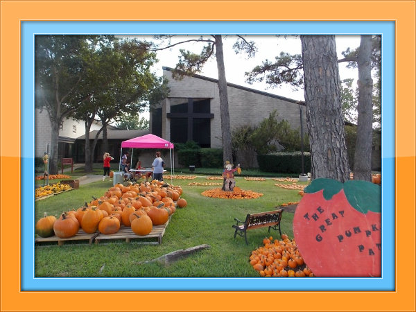 The best fall festivals and pumpkin patches in katy, tx.