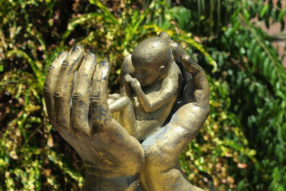 https://cdn.pixabay.com/photo/2018/07/12/17/23/abortion-3533963_960_720.jpg