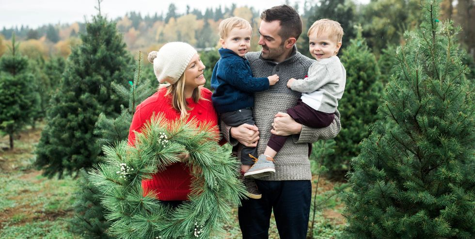 family picking out a christmas tree in christmas tree grove