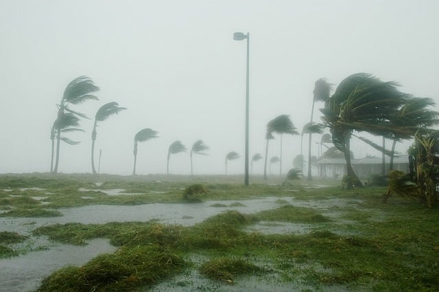 Hurricanes to Hit Florida