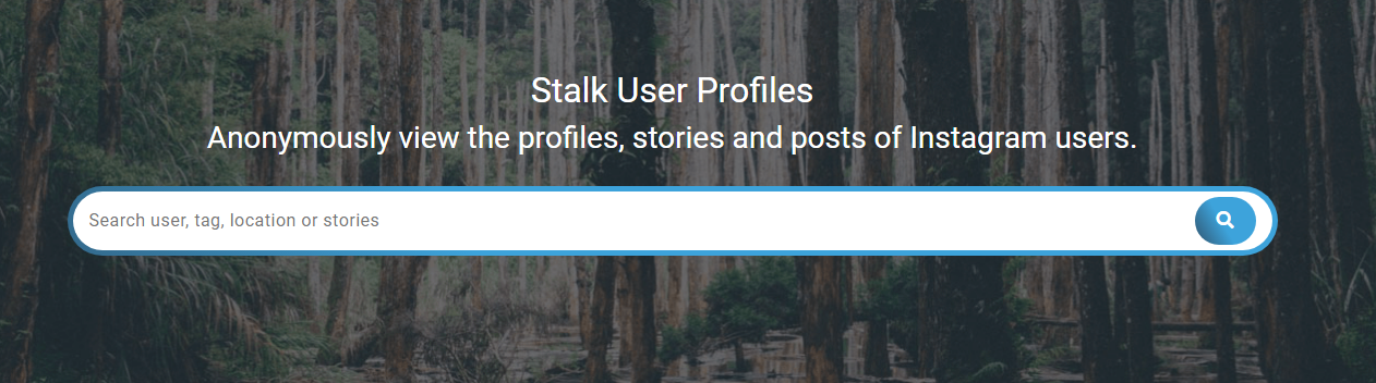 Insta Stalker