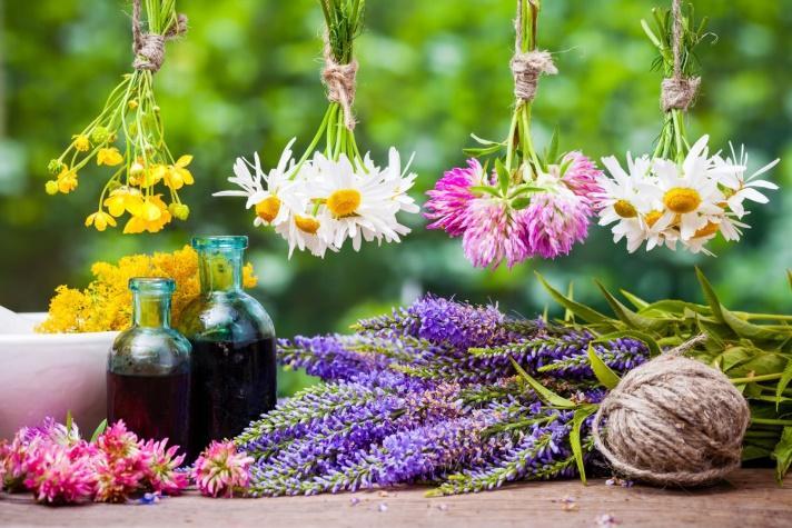 Risultati immagini per fiori di bach e medicina cinese